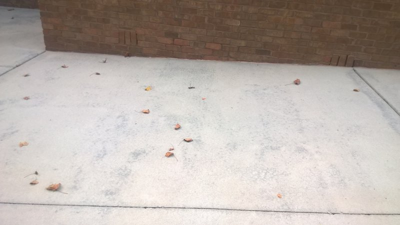 What causes the dark spots on concrete after pressure wash