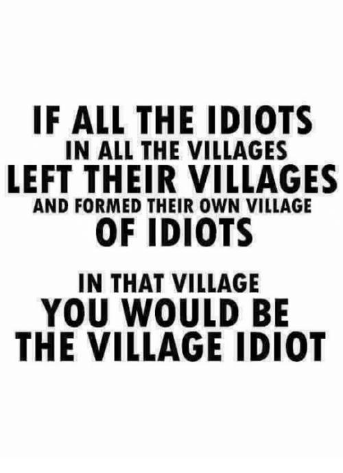 if-all-the-idiots-in-all-the-villages-left-their-14289543.jpg