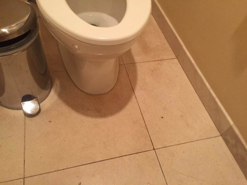 Dog Urine Stain On Limestone TruckMount Forums Carpet Cleaning - How to clean dog urine from tile floors